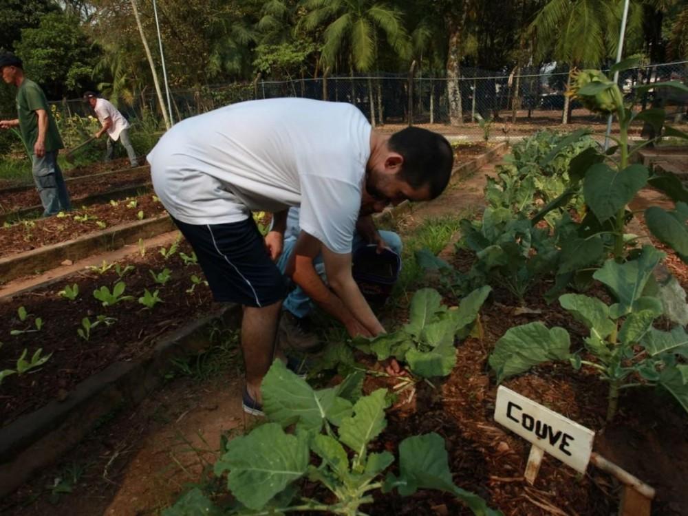 Jardim Botânico de Santos abre vagas para curso profissionalizante