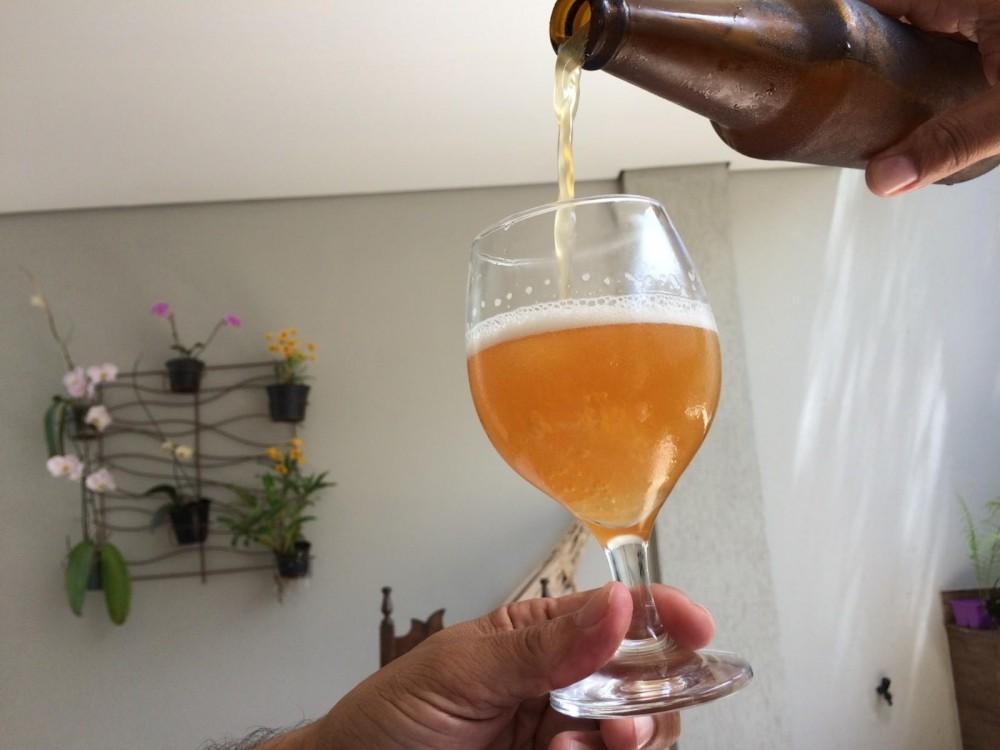 Concurso elege a melhor cerveja artesanal que será oferecida como