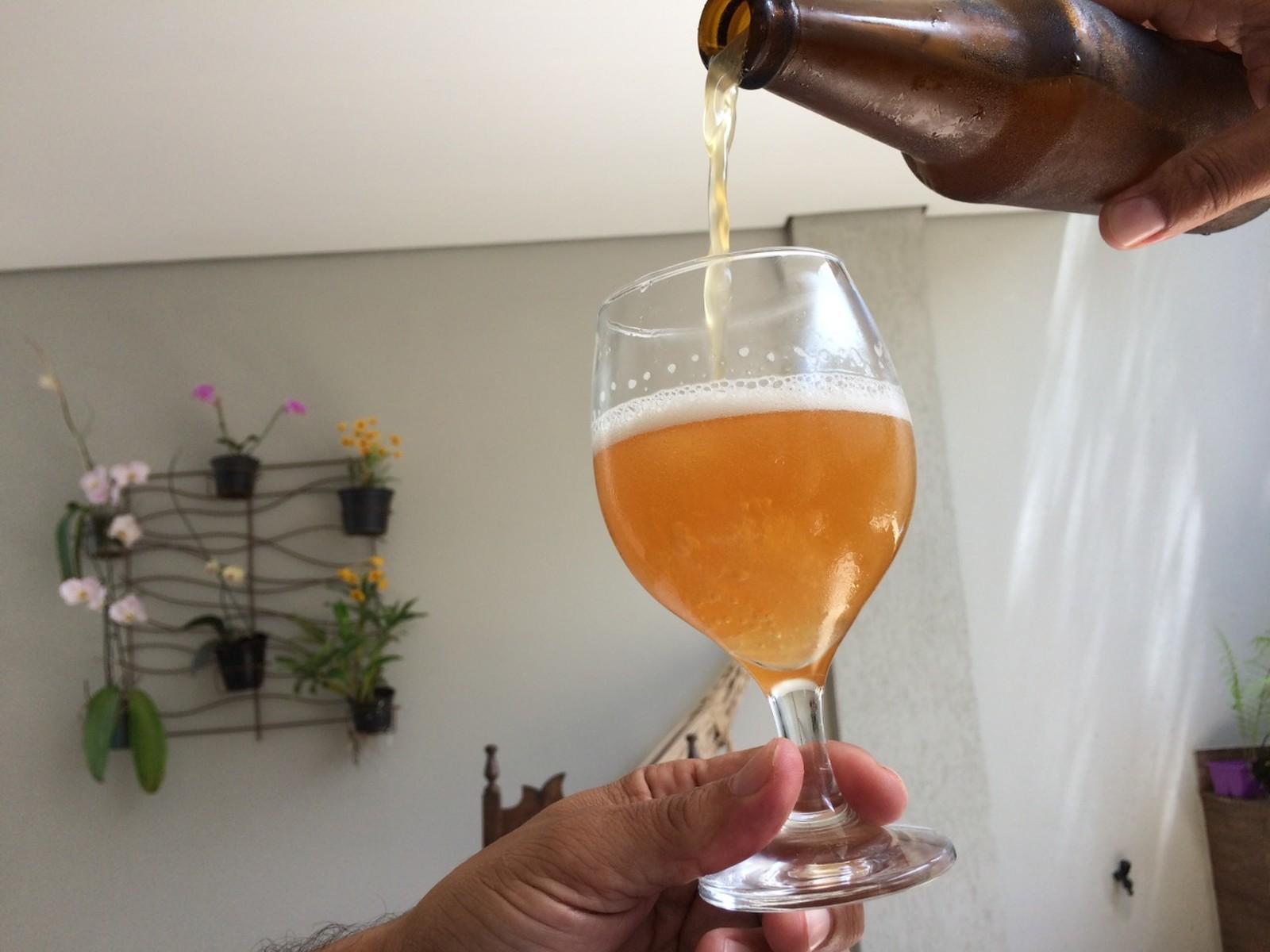 Concurso irá eleger a melhor cerveja artesanal de Santos; inscrições estão abertas